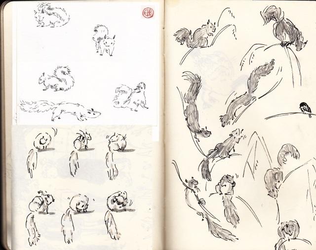 squirrel sketches